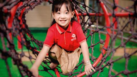 TMS School及其在幼儿教育中的烙印